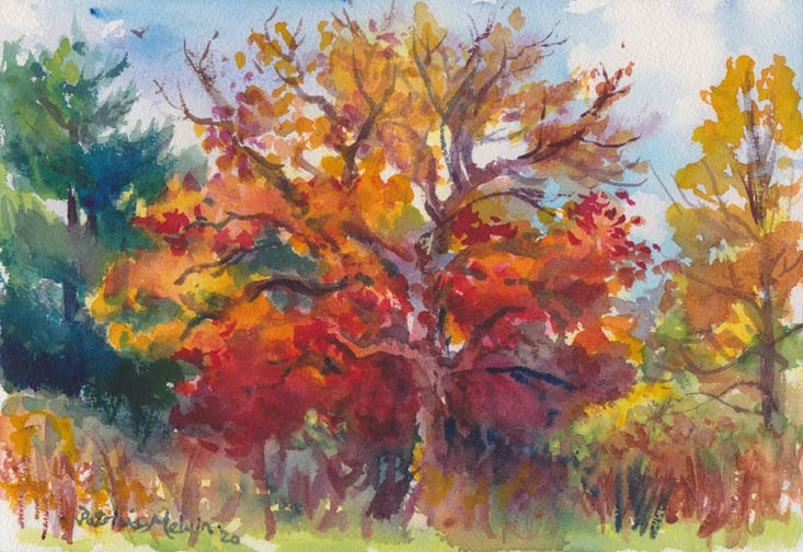 rwwc01-001-red-tree